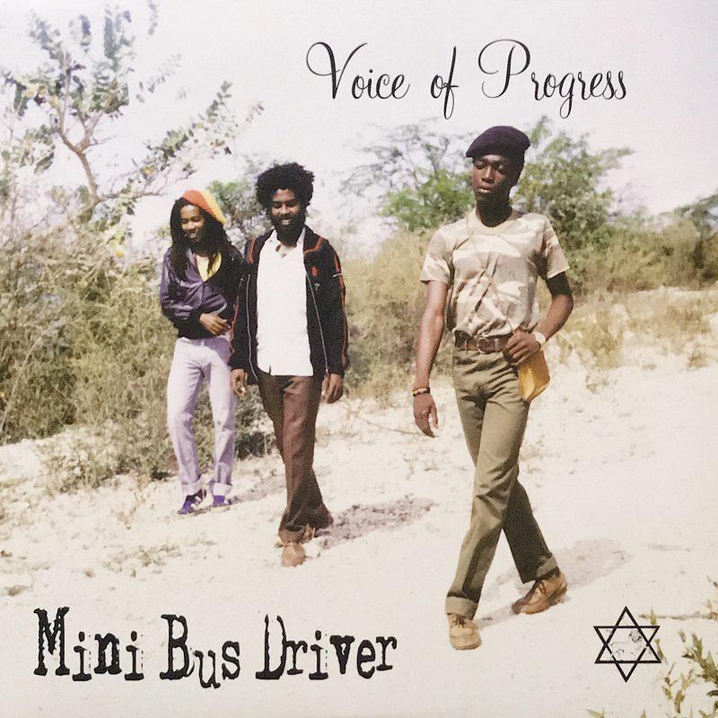 Mini Bus Driver
